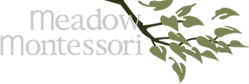 Meadow Montessori School Logo