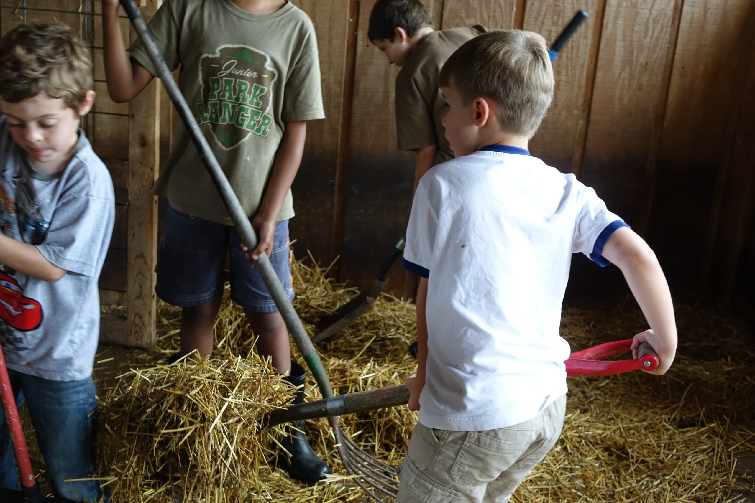 Students at the Farm